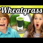 Benefits of Wheatgrass for Kids